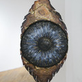 """You Don't Look Like You"""